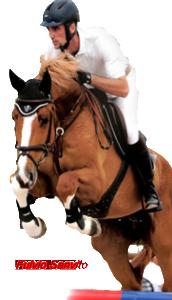 Scuola equitazione Pessano